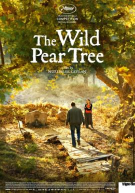 the will pear tree